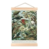 Native Birds Mini Wall Chart-home-The Vault