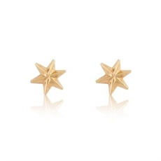 Star Studs 18ct Gold Plate-jewellery-The Vault
