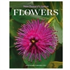 NZ Native Flowers 2021 Calendar Small-new-in-The Vault