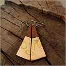 Short Drop Triangle Earrings Variegated