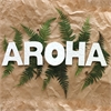 AROHA Ceramic Letter Set Koru White-home-The Vault