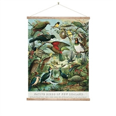 Wall Chart Large Native Birds of NZ-home-The Vault