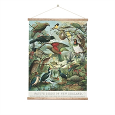 Wall Chart Med Native Birds of NZ-wall-art-and-prints-The Vault