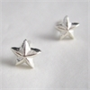 Whalebird Star Stud Earrings - Stg-jewellery-The Vault