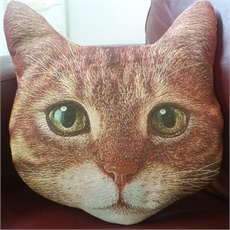Ginger Tom Cushion--home-The Vault