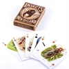 Insects of NZ Playing Cards-under-$50-The Vault