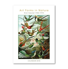 Art Forms in Nature A3 2018 Calendar-office-The Vault
