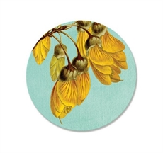 Vintage Kowhai Coaster Single-house-The Vault