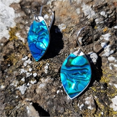 Paua Veneer Earrings Plain Blue-jill-main-The Vault