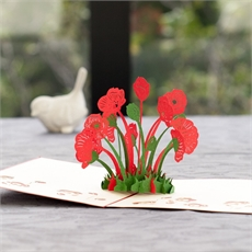 Poppy Creative Pop Up Card-gift-cards-and-tags-The Vault