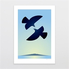 'Morning Tui' Rangitoto - A4 Print-home-and-wedding--The Vault