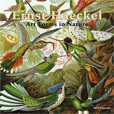 Haeckel Art Forms Nature 2019 Calendar-new-The Vault
