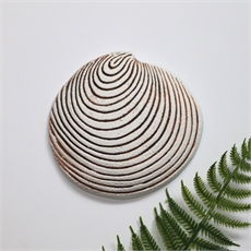 Cockle Shell Wall Hanging-home-The Vault