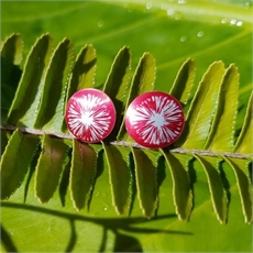 Alum Pohutukawa Studs Ruby-new-The Vault