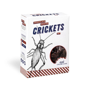 Chocolate Coated Crickets 10g Box