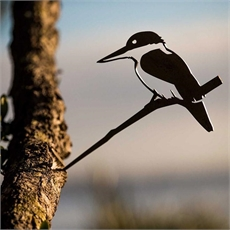 Metalbird Steel Kotare Kingfisher-home-The Vault