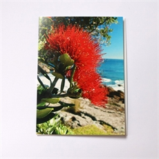Coastal Pohutukawa Card-cards-The Vault