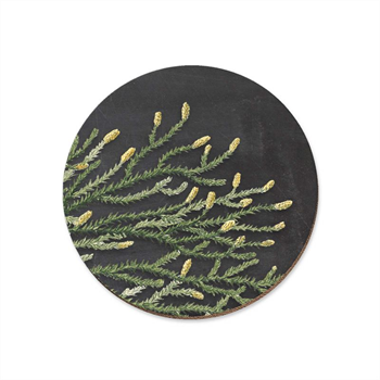 Rimu Red Pine Coaster Single