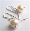 White Pearl Earrings Stg Silver Hooks-jewellery-The Vault