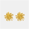 Mt Cook Lily Studs 22ct Gold Plate-jewellery-The Vault