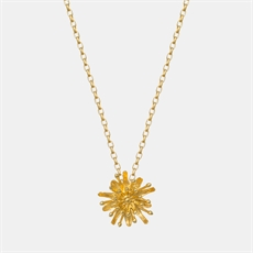 Mt Cook Lily Simple Chain Necklace GP-jewellery-The Vault