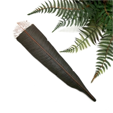 Huia Feather Wall Art-fern-flat-pottery-The Vault