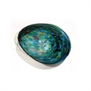Flame Daisy Glass Paua Small