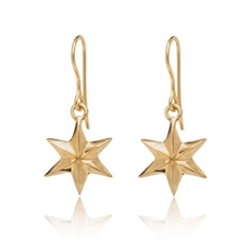 Star Earrings on Hook Gold Plate-jewellery-The Vault