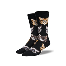 Woman's Crew Kittenster Black-for-her-The Vault
