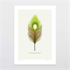 Kiwi Feather A4 Print-home-The Vault